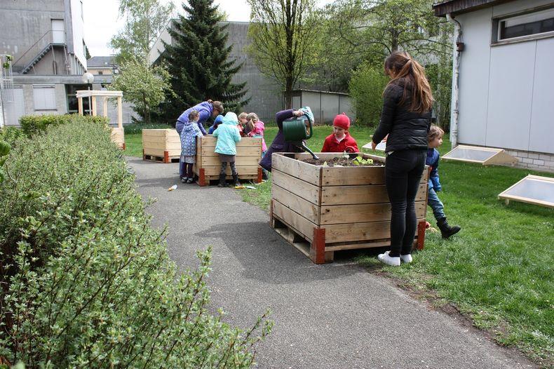 Erntefest Berner Platte 2.0